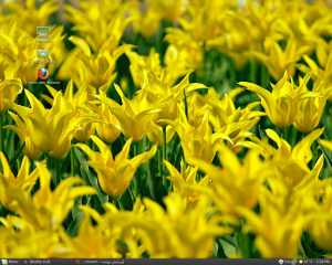 میزکار گنوم، لینوکس مینت، سیستم خودم :دی